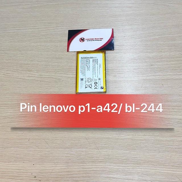 Pin Lenovo P1-A42 / BL-244 zin